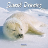 Kalender 30x30cm 2020 - Sweet Dreams